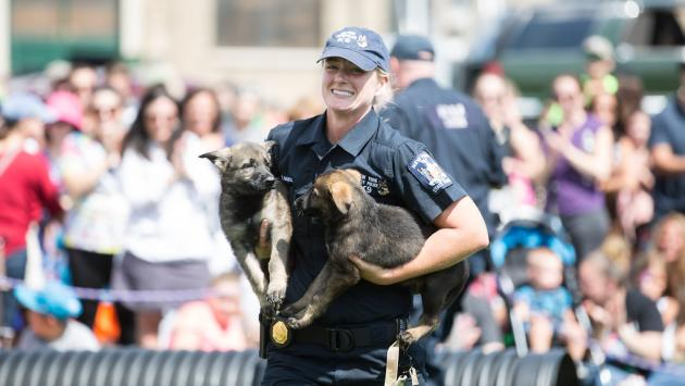 Canine Unit member during demonstration at New York State Fair.